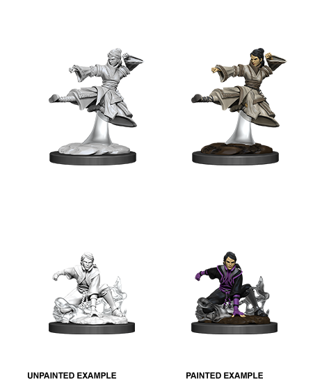 Female Human Monk: Nolzur's Marvelous Unpainted Miniatures
